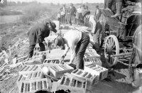 Photo of prohibition smuggling